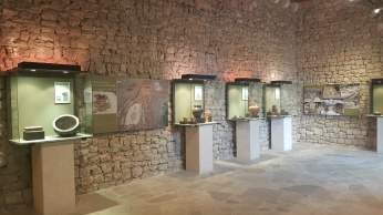 Prehistoria Museo Historia Manacor